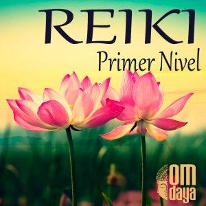 Formación Reiki en OM Daya